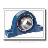 skf SYNT 70 FW Roller bearing plummer block units for metric shafts